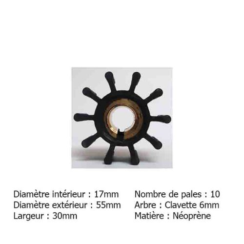 Impeller-Perkins-4236-double-pompe    Turbine-perkins-4236-cazaux    Cazaux-MB2017 CAZAUX MB2017